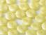 Wavelet Beads
